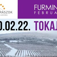 Furmint February in Tokaj